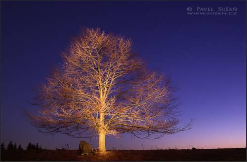 malovani-svetlem-7.jpg